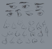 Eyes and Noses by Kitty-Winder