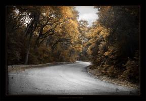 Gloomy Autumn by atomicpixel