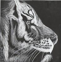 Tiger by Apfeldiebin