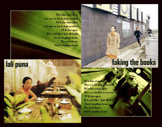 lali puna's faking the books by fakingthebooks
