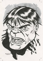Hulk Mad by NeilRiehle