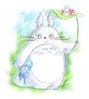 Totoro for Akebono by jkBunny