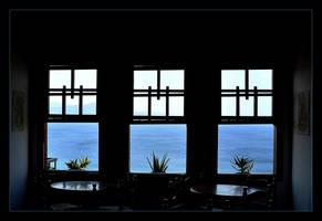 Three windows, three vases, three plants by skarzynscy