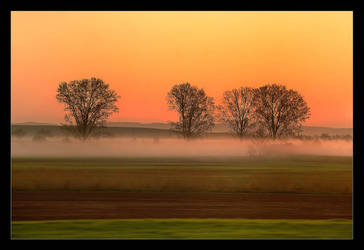 Just Before Dawn In Train To Prague by skarzynscy