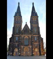 Basilica Of Saints Peter and Paul - Panorama by skarzynscy