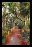 In Majorelle's Garden by skarzynscy