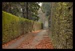 Follow The Quiet Alley Down by skarzynscy