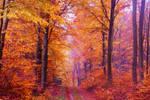 Autumn's Highlight by Lumarieus21