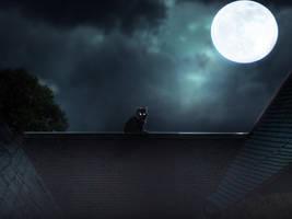 Moonlight by EdhoART2