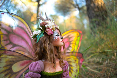 Fauve, deer fairy by Leablackvelvet