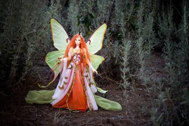 Elaine, Moon moth fairy by Leablackvelvet