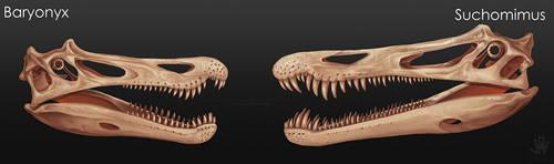 Baryonyx vs Suchomimus by DemonML