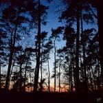 Evening Charade by BenHeine