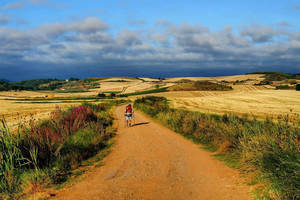 On the path - Santiago de Compostela Pilgrimage... by BenHeine