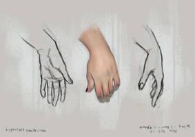 anatomy study 4 by gastrovascular