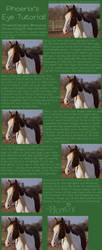 Horse Eye Tutorial by PhoenixAureus
