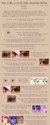 G4 MLP Anatomy Notes - Eyes by Pix3M