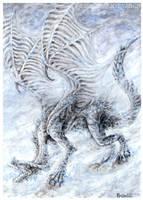 Blizzard by Kirsch-vanderWit