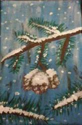 Pinecones by Shottis