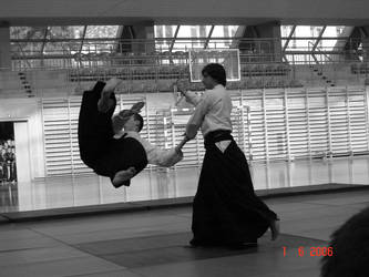 Martial arts - Aikido by ForAlion