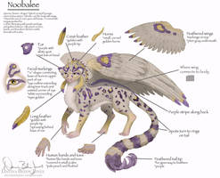 Noobalee Refrence Sheet by FamiliarOddlings