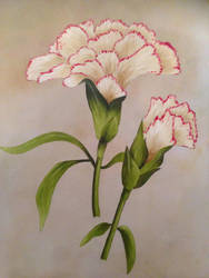 Carnation flower oil painting by Ned-The-Hat