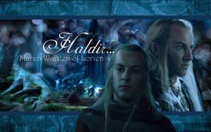 Haldir of Lorien by drkay85