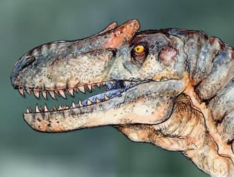 Allosaurus by DinoDilopho