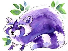 Raccoon by ShanaPatry