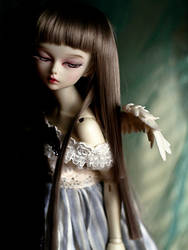 If I were a bird by shaiel