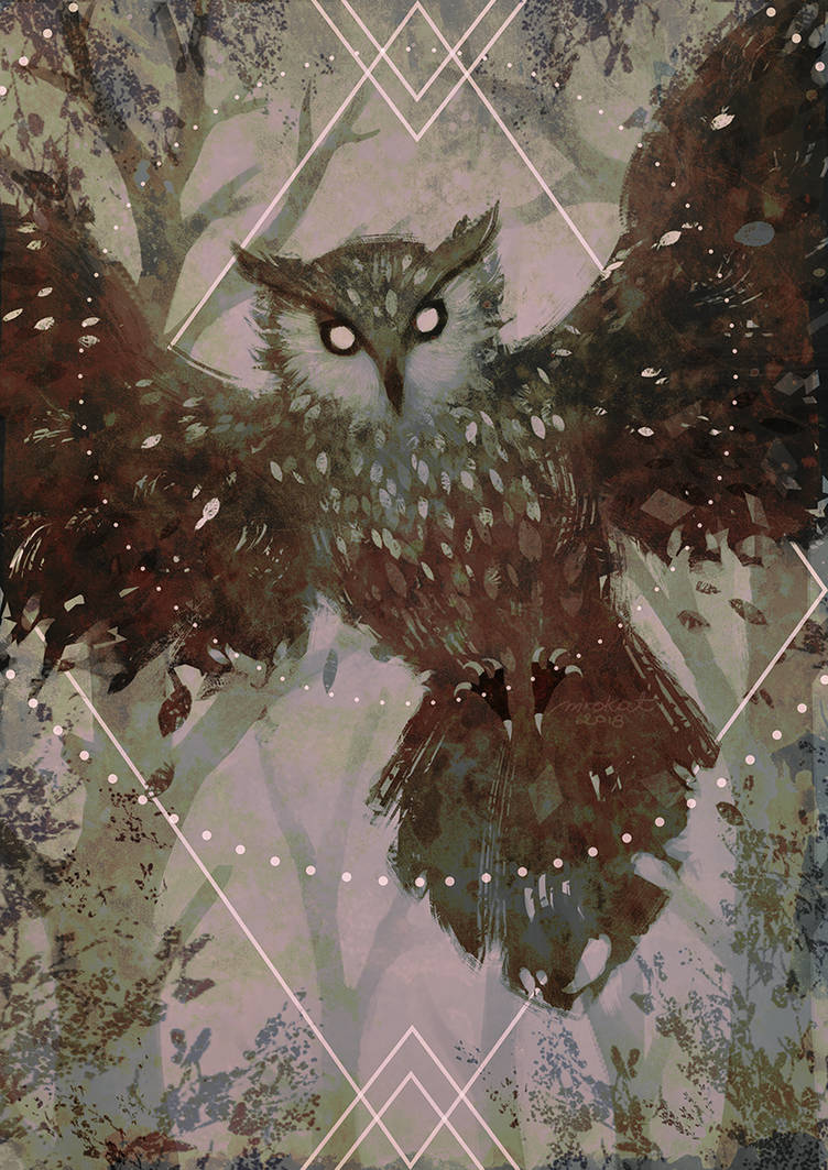 Owl by mrokat