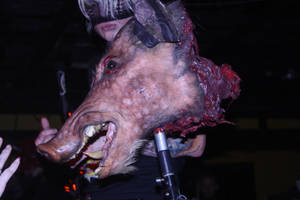 Pig Head by Psycho-Drummer