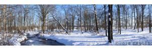Snowy Creek Pan by eaglesgal54