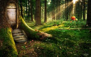 Enchanted Wood II by AndreaAndrade