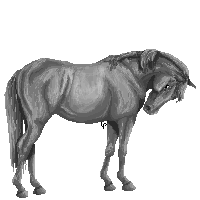 Freeuse pixel greyscale by LuxxPrior