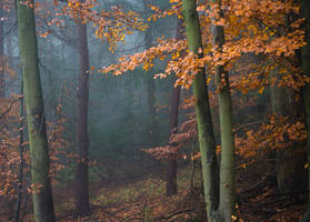 Falling by aw-landscapes