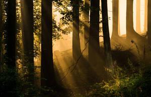 Lightshower by aw-landscapes