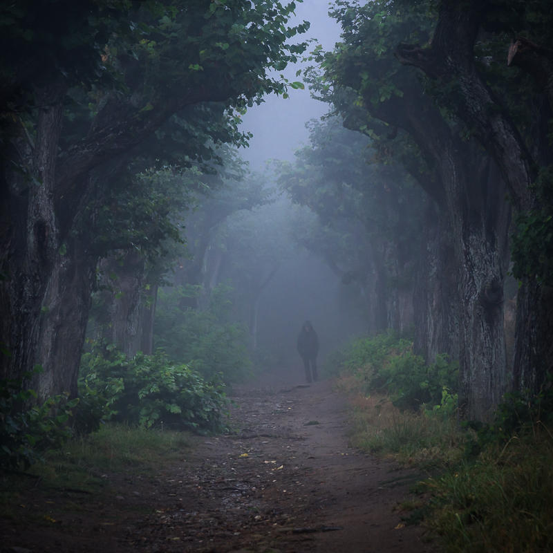 A long and weary path by aw-landscapes