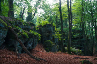 Prehistoric by aw-landscapes