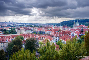 Roofs of Prague VII by olideb08