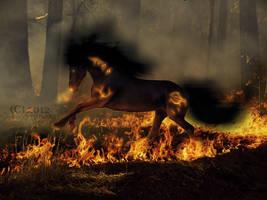 What follows War, but Ruin? by Cataclysm-Studios