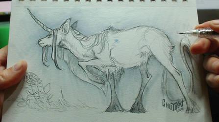 Unicorn Project: 1 by chutkat