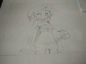 WIP - Shantae's BFF Sky (Working Title) by Mario9919