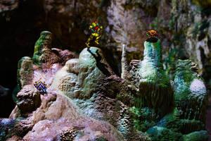 Real Bits - Super Metroid: Zebes cavern by VictorSauron