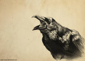 Crow drypoint by Razor-Sensei