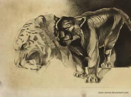 Tiger drypoint by Razor-Sensei