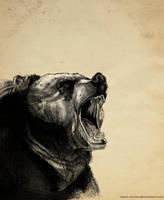 Bear drypoint by Razor-Sensei