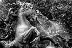 Les chevaux des Quinconces by Markotxe