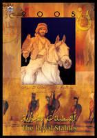 shek zayed by roufa