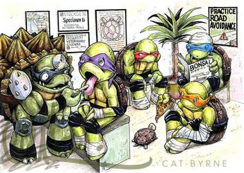 Dr Slash and the Ninja Turtles by CatByrne